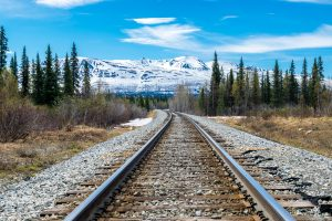 Part of Alaska railroad in the forest of Denali National Park with a mountain range in background.